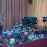 ekthesi-xrist-2014-4